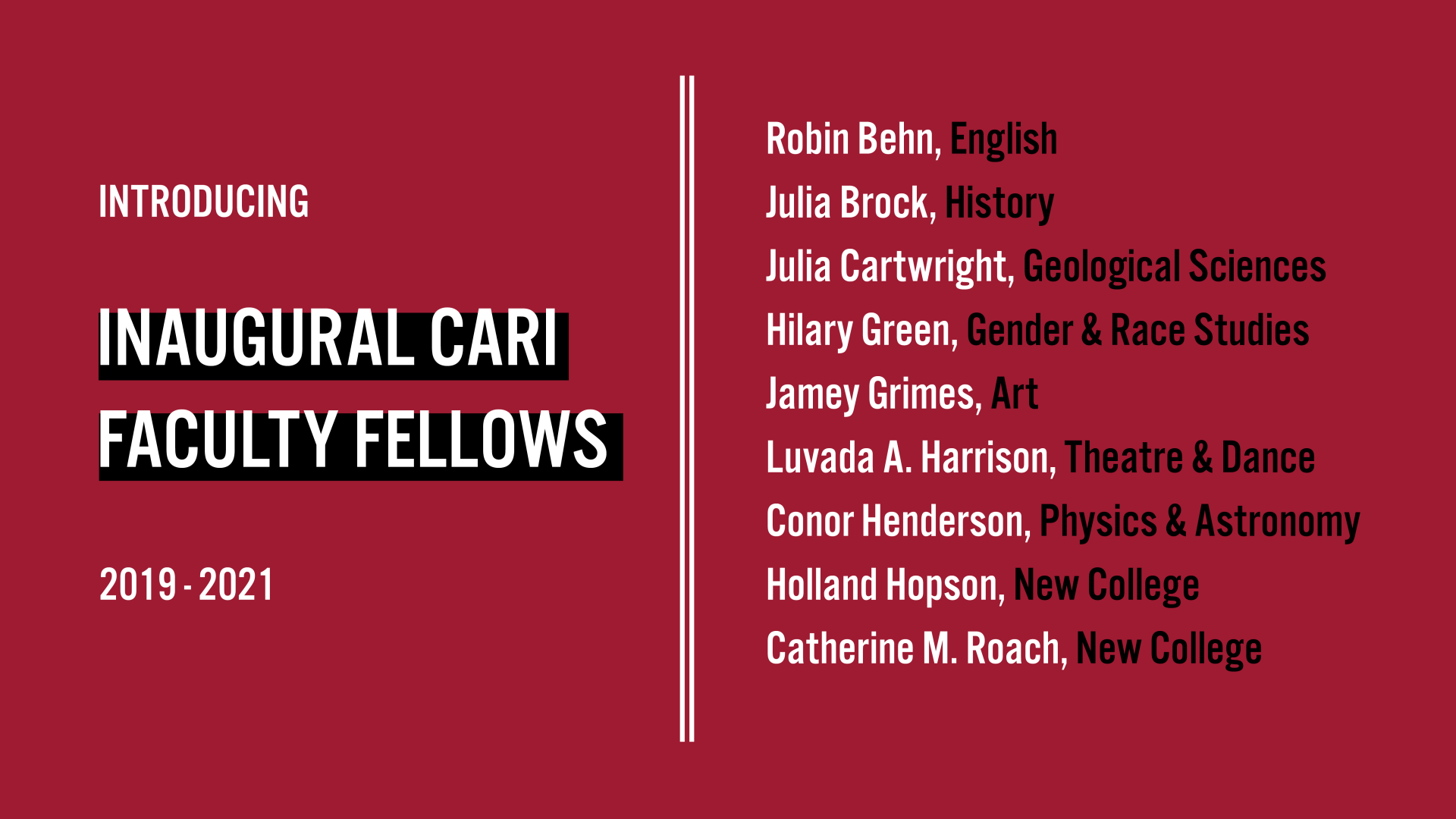 CARI Faculty Fellows