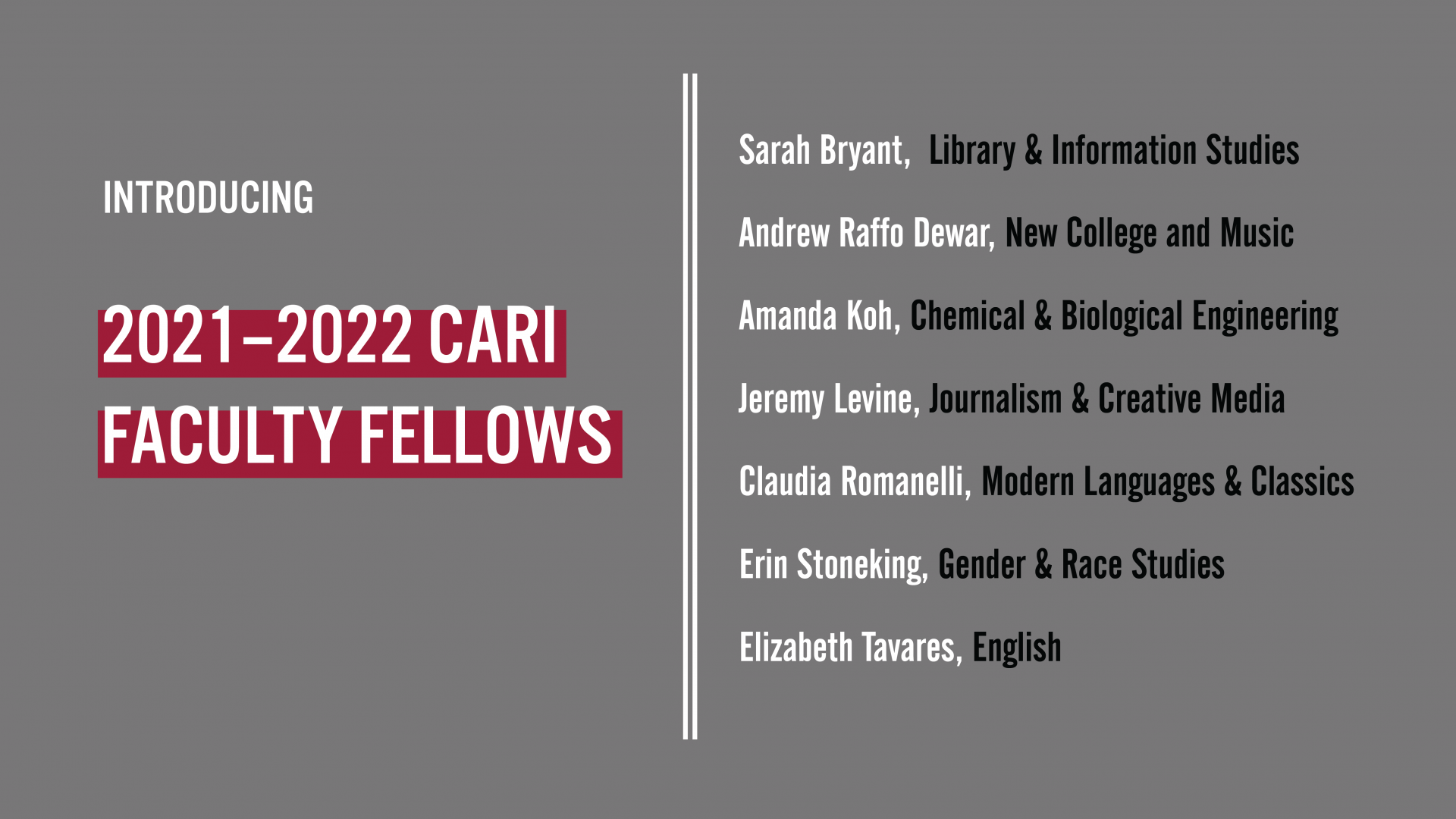 CARI Faculty Fellows